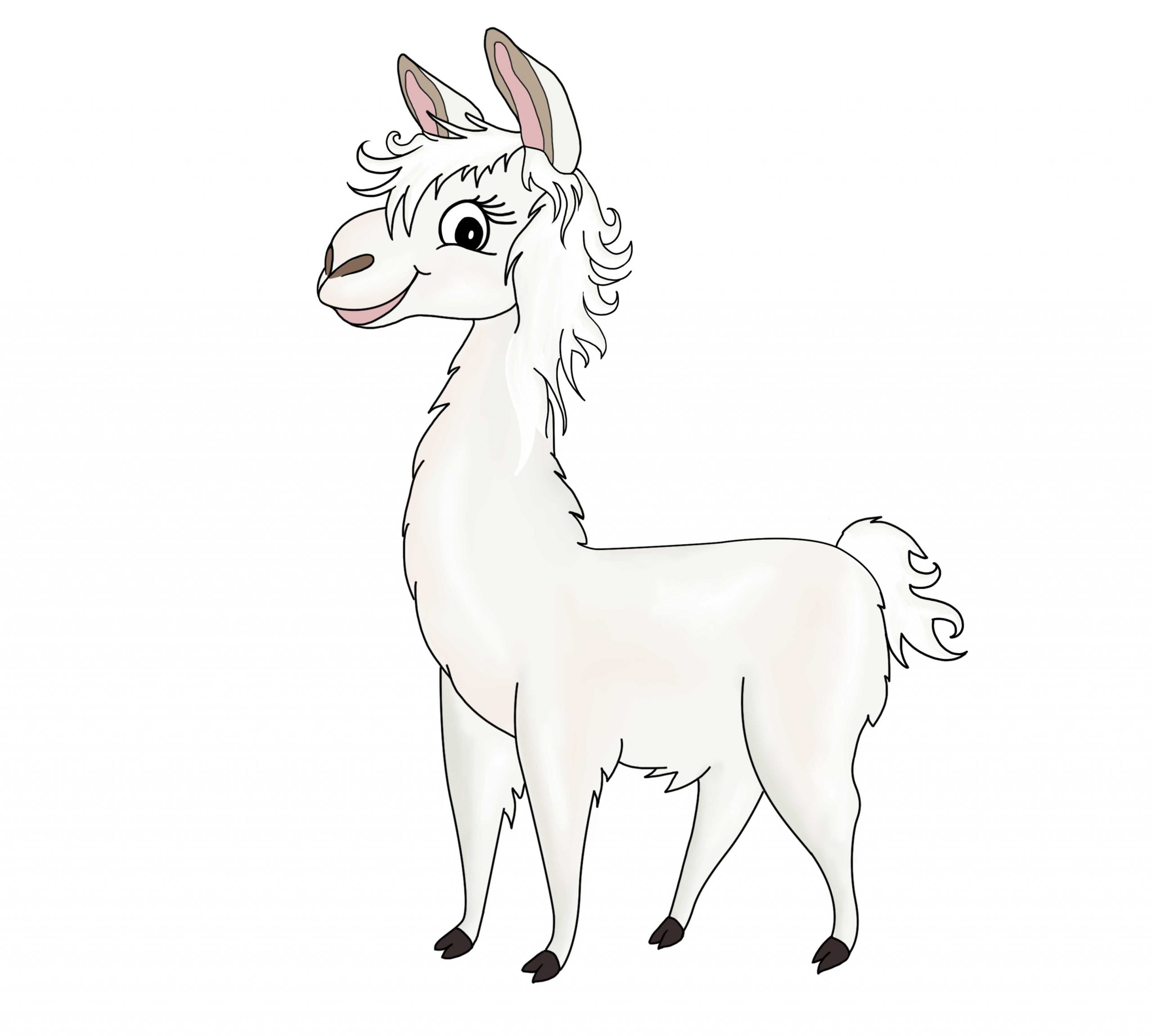Arya the Llama